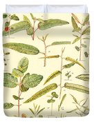 Vintage Botanical Illustration Duvet Cover