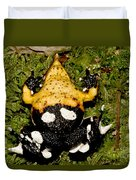 Darwins Frog Duvet Cover