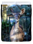 Hellabrunn Zoo - Munich, Germany Duvet Cover