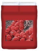 Human Red Blood Cells, Sem Duvet Cover
