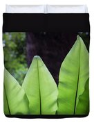 Rainforest At Foxground, Kiama Duvet Cover