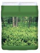 146113 Frens In Pisgah Nat Forest H Duvet Cover