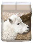 Baby Mountain Goats On Mount Evans Duvet Cover