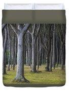 150403p254 Duvet Cover