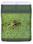 150403p322 Duvet Cover
