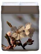 Black Cherry Tree  Duvet Cover