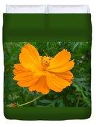 Australia - Yellow Flowers Of The Cosmos Carpet Duvet Cover