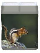 Golden-mantled Ground Squirrel Duvet Cover
