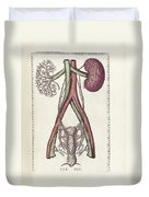 The Science Of Human Anatomy Duvet Cover