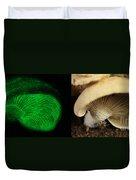 Luminescent Mushroom, Panellus Stipticus Duvet Cover