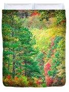 Autumn Season On Blue Ridge Parkway Duvet Cover