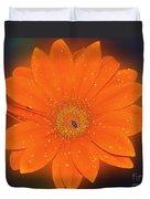 Orange Gerber Duvet Cover