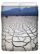 1a6832 Mud Cracks In Death Valley Duvet Cover