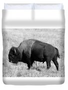 American Bison Buffalo Bull Feeding On Dry Fall Grass Duvet Cover