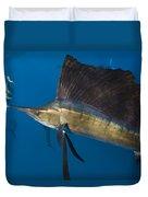 Atlantic Sailfish Istiophorus Albicans Duvet Cover