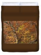 Autumn In The Woods Duvet Cover