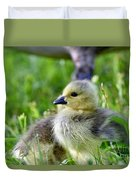 Baby Goose Chick Duvet Cover