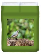 Beautiful Nuthatch Bird Sitta Sittidae On Tree Stump In Forest L Duvet Cover