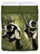 Black And White Ruffed Lemur Duvet Cover
