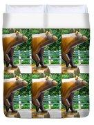 Bronze Statue Sculpture Of Bear Clapping Fineart Photography From Newyork Museum Usa Fineartamerica Duvet Cover