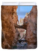 Navajo Trail Natural Bridge Duvet Cover