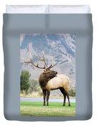 Bull Elk Duvet Cover by Wesley Aston