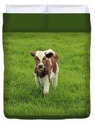 Calf In A Pasture Duvet Cover
