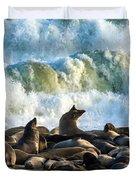 Cape Fur Seals Arctocephalus Pusillus Duvet Cover