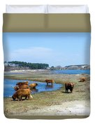 Cattle Scottish Highlanders, Zuid Kennemerland, Netherlands Duvet Cover
