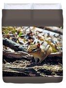 Chipmunk At Heckrodt Duvet Cover