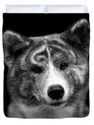 Closeup Portrait Of Akita Inu Dog On Isolated Black Background Duvet Cover