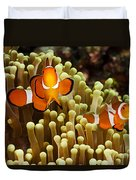 Clown Anemonefish Duvet Cover