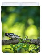 Downy Woodpecker In The Wild Duvet Cover