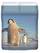 Emperor Penguin Aptenodytes Forsteri Duvet Cover by Tui De Roy