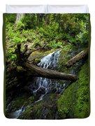 Fern Falls At Jedediah Redwoods State Park Duvet Cover