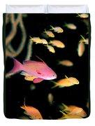Fiji, Reef Scene Duvet Cover