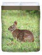 Florida Marsh Rabbit Duvet Cover