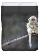 Golden Snub-nosed Monkey Rhinopithecus Duvet Cover