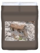 Grupo Nohoch Mul At The Coba Ruins  Duvet Cover