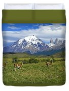 Guanacos In Torres Del Paine Duvet Cover