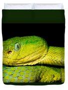 Guatemala Palm Pitviper Duvet Cover