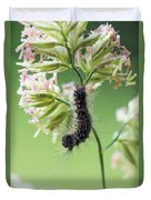 Gypsy Moth Caterpillar Duvet Cover