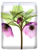 Hellebore Flowers, X-ray Duvet Cover