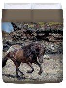 Icelandic Black Stallion, Iceland Duvet Cover