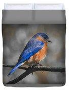 Male Eastern Bluebird Duvet Cover