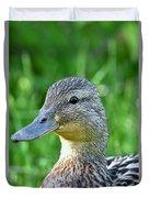 Mallard Duck Hen Duvet Cover