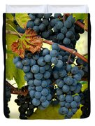 Marechal Foch Grapes Duvet Cover