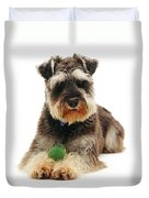 Miniature Schnauzer Duvet Cover by Jane Burton