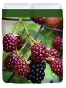 My Blackberries Duvet Cover