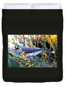 Noisy Miner In Oz Duvet Cover